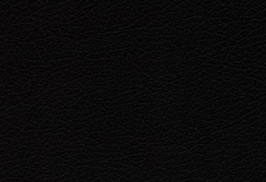 Domus Black (эко кожа)